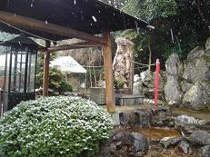3-12雪