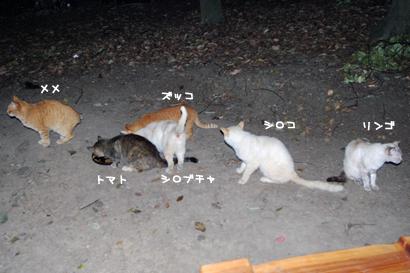 2010-06-09-2.jpg