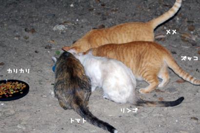 2010-08-10-1.jpg