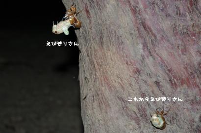 2010-08-10-4.jpg