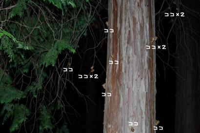 2010-08-10-5.jpg