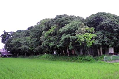 2010-09-06-2.jpg