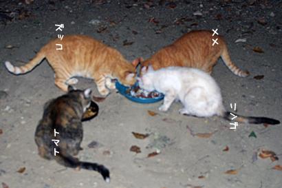 2010-09-06-3.jpg