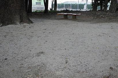 2011-01-18-1.jpg