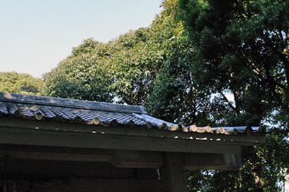 2011-02-09-8.jpg