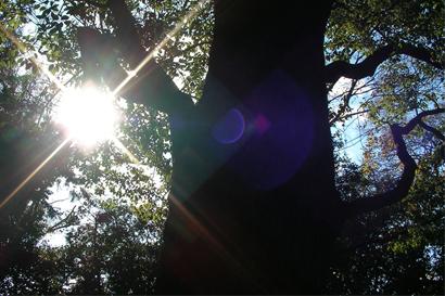 2012-08-02-4.jpg