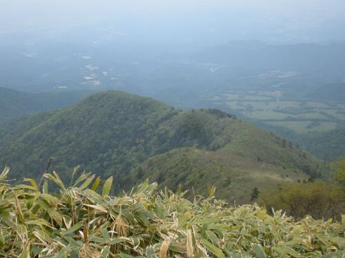 2010_0608AR.jpg