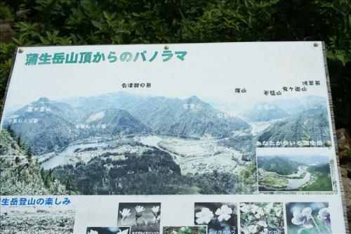 2010_0708AT.jpg