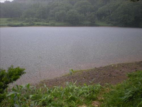 2010_0817CX.jpg