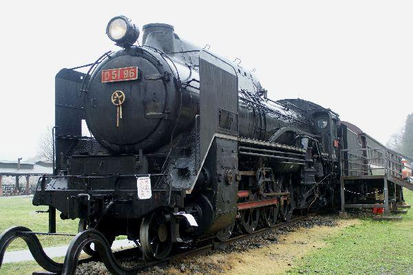 D51b.jpg