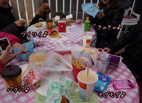 2012-01-19-002k.jpg