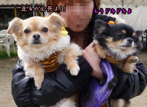 2012-01-19-014p.jpg