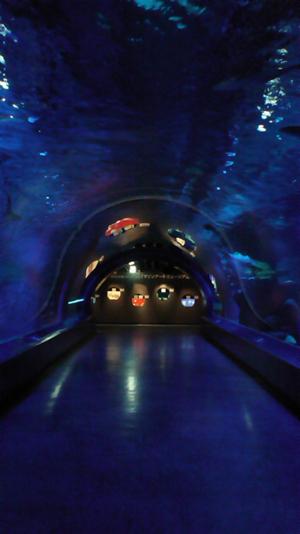 エプソン水族館