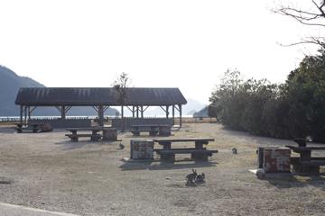 キャンプ場にもウサ