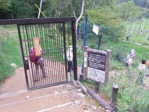 入笠山のシカ柵 クリックで拡大