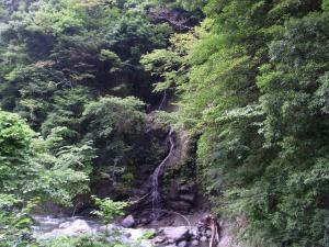 三日月橋から見た滝 クリックで拡大
