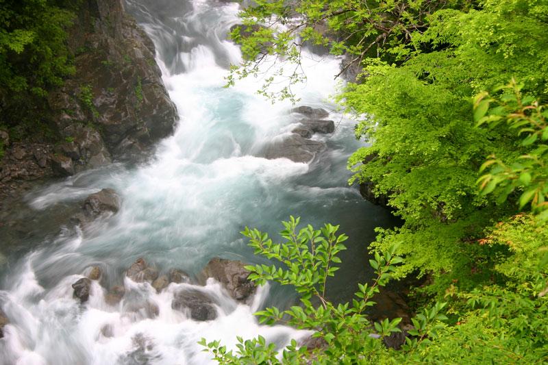 新緑の渓谷 (徳島県 那賀郡 那賀町 高ノ瀬峡)
