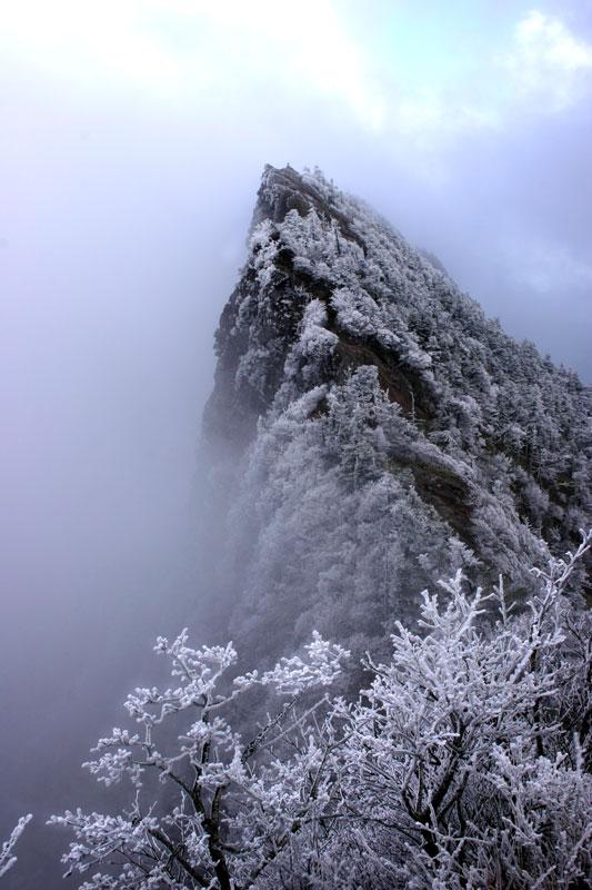霧氷石鎚 (愛媛県 西条市 石鎚山)