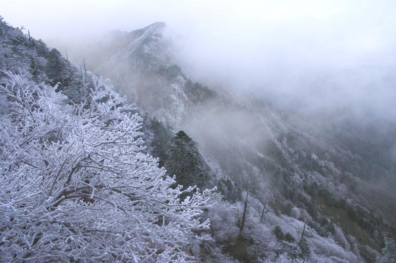 霧の二ノ森 (愛媛県 西条市 久万高原町 二ノ森)