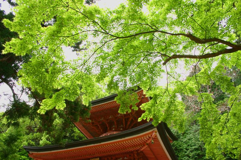 新緑の塔 (香川県 高松市 牟礼町)