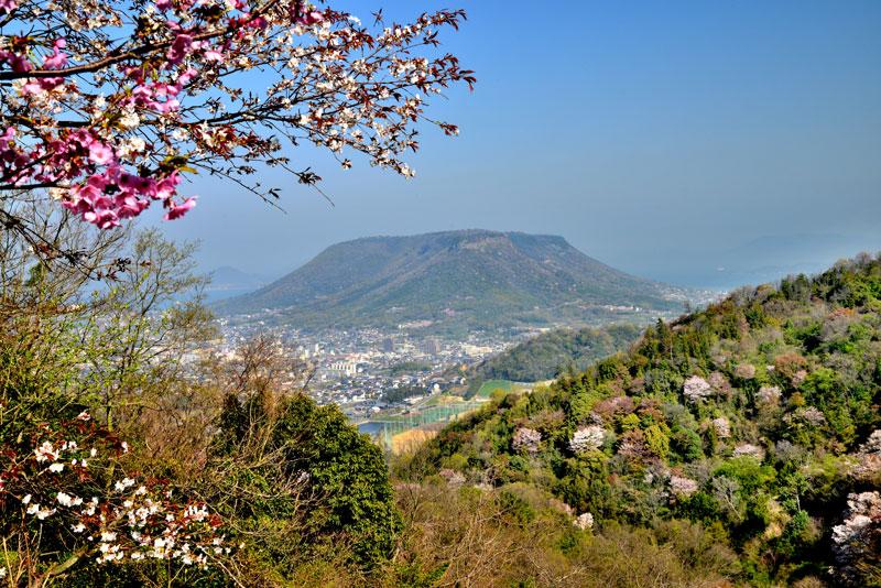桜の頃 屋島 (香川県 高松市 牟礼町)
