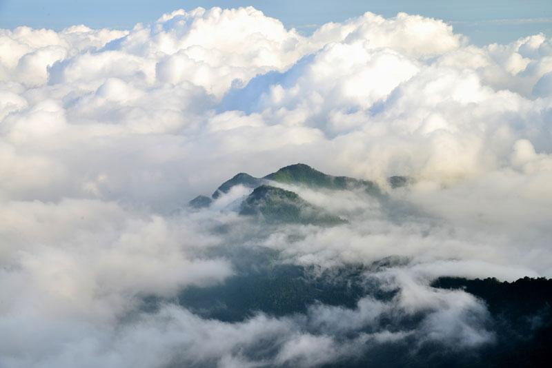 雲に包まれて  (愛媛県 西条市 東黒森)