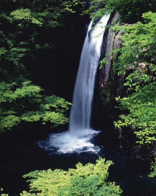 新緑 大釜ノ滝 (徳島県 那賀郡 那賀町 木沢 大釜ノ滝)