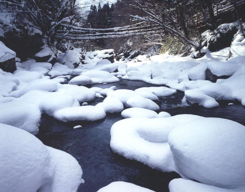 雪深し奥祖谷 (徳島県 三好市 東祖谷山 奥祖谷 二重かずら橋)