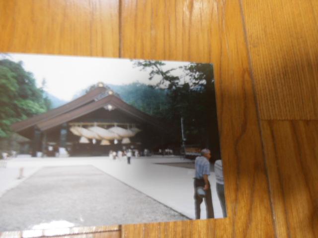 P9101188.jpg