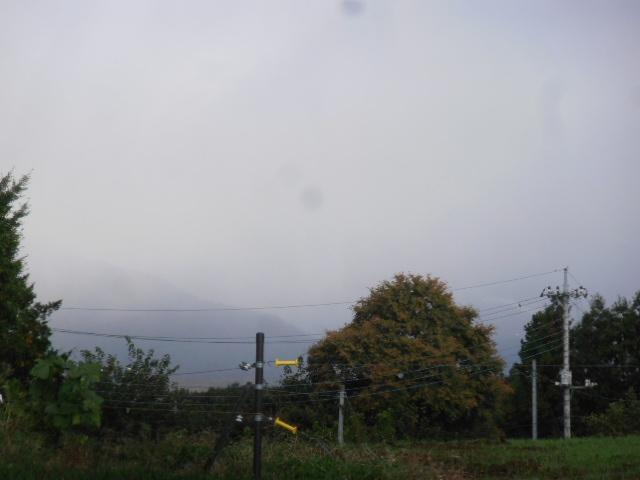PB022006.jpg