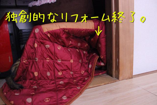 kako-Cd9el1y8yKLPLdCP.jpg