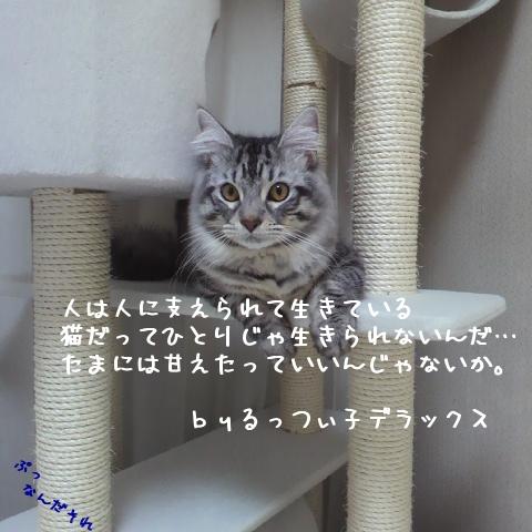 IPinV.jpg