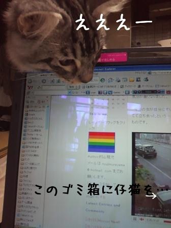 わんだふるにゃんのブログ-ニュース3