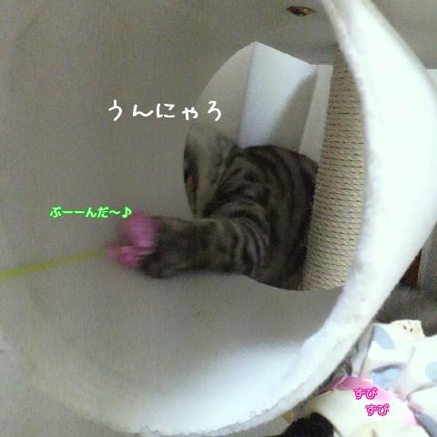 j_7aO.jpg