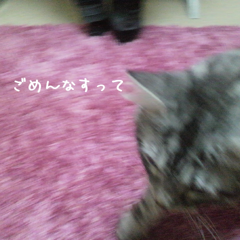 xDE1p.jpg