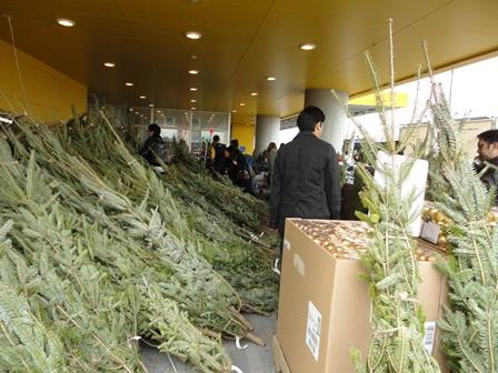 IKEAクリスマスツリーを購入2010 (1)