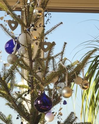 もみの木のクリスマスツリー20106