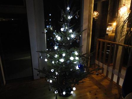モミの木ライトアップ1