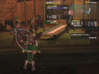 HCドド片手剣強化01