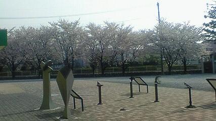 近所の風の公園1