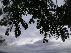 SANY0506_20120816222326.jpg