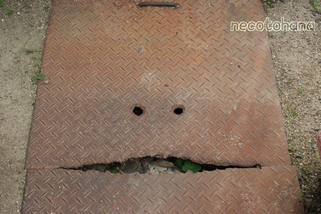 IMG_1775浄化槽