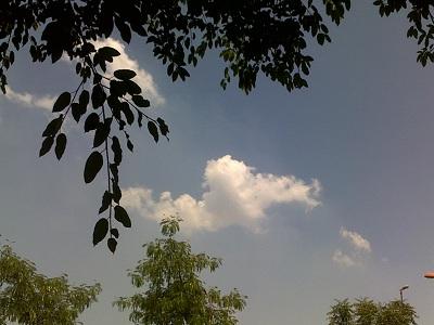 sky-190411.jpg