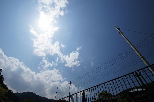 8_20120518200205.jpg