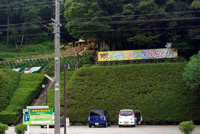nishiyamalesser-05.jpg