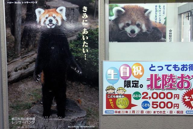 nishiyamalesser-14.jpg
