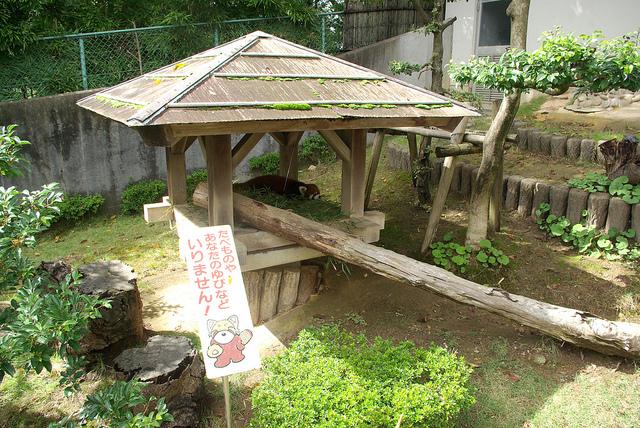 nishiyamalesser-22.jpg