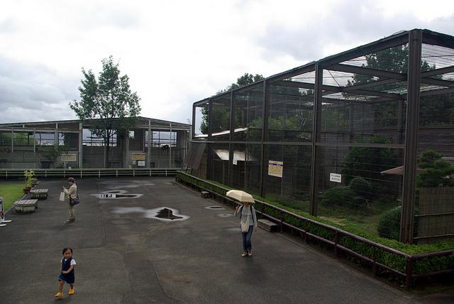 nishiyamalesser-29.jpg