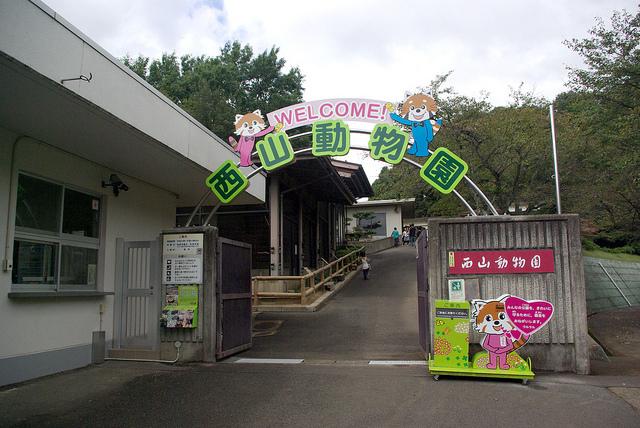 nishiyamalesser-33.jpg