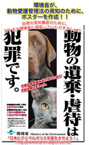 poster_0219_webkp.jpg